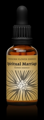 Spiritual marriage 30 ml