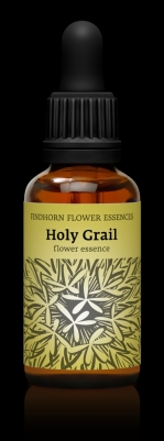 Holy Grail 30 ml.