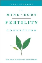 Mind-Body Fertility Connection
