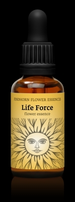 Life force 30ml
