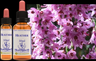 Heather 10 ml (bach)